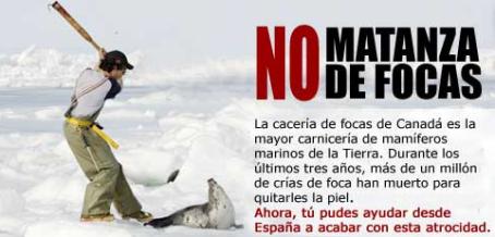 matanza_focas